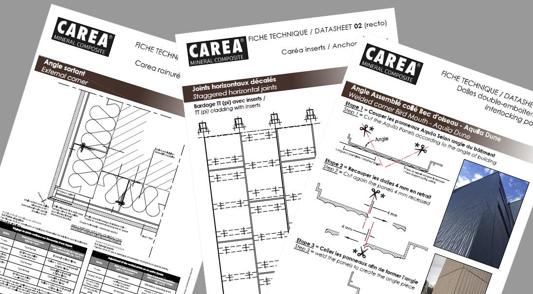 Carea cladding - singular points